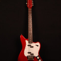 Fender Electric XII 1965