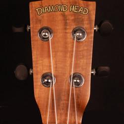 Diamond Head DU-350TCE