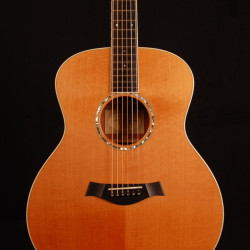 Taylor GS-5