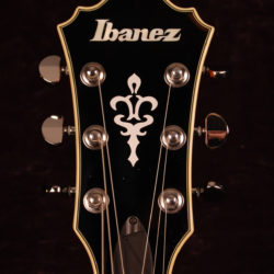 Ibanez AF-75