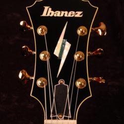 Ibanez PM-200