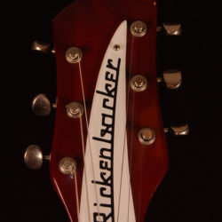 Rickenbacker 620 1973