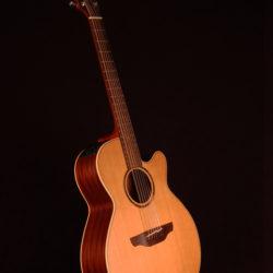 Takamine ETN40c 12 string