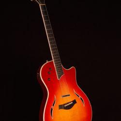 Taylor T-5-S  2009