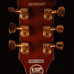 ESP Sun Eclipse FT