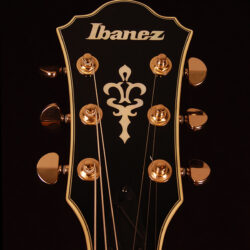 Ibanez AS93ZW-NT