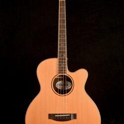 Ozark 3372C Tenor Guitar