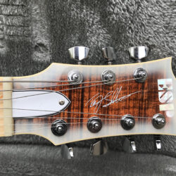 ESP Custom Shop Terji Eclipse-7 FT