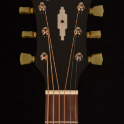 Blueridge BG-1500E