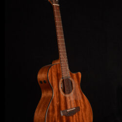 Ibanez AE2912-LGS 12-string