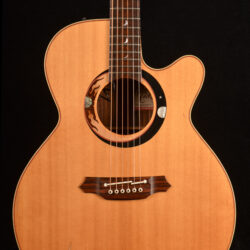 Takamine LTD 98 Limited Edition